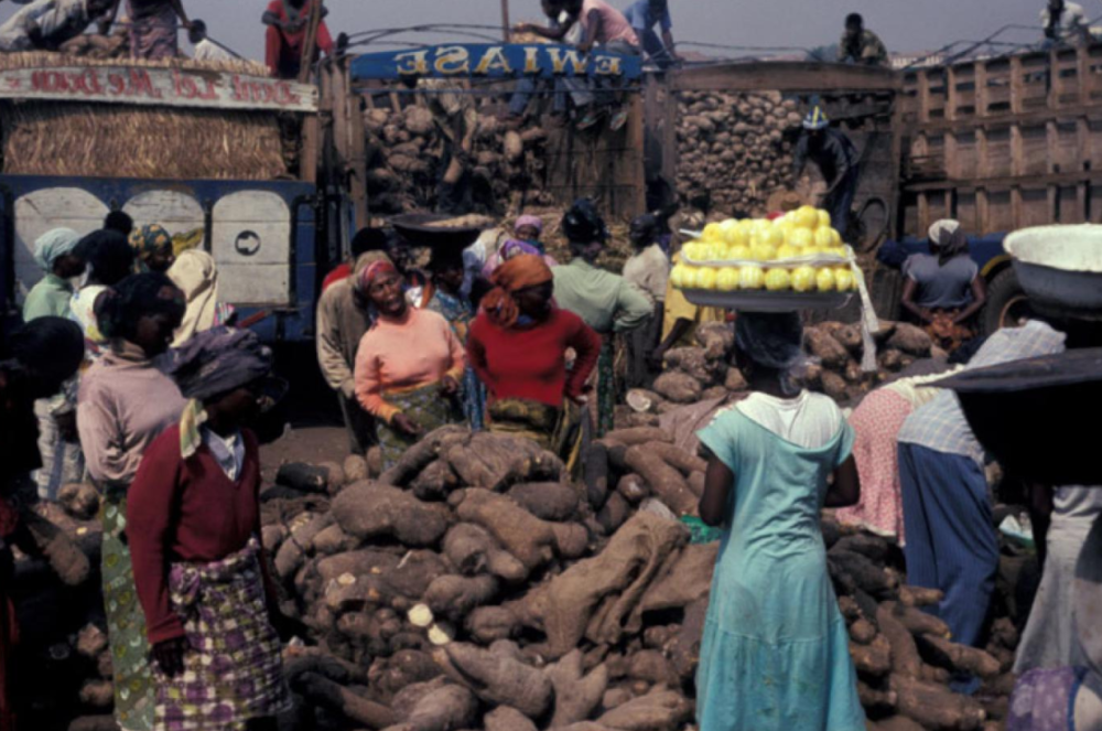 Women shopping in a yam market in Ghana.